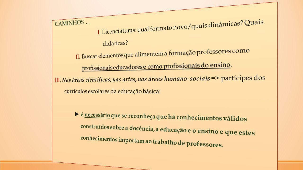 CAMINHOS. I. Licenciaturas: qual formato novo/quais dinâmicas