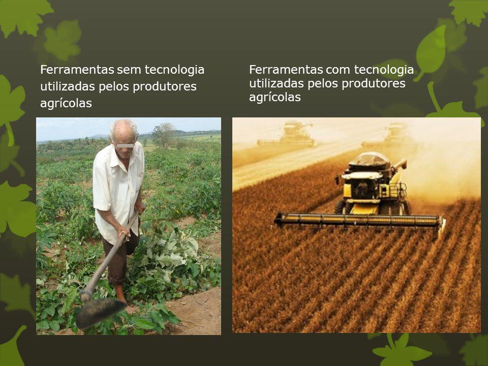 Ferramentas com tecnologia utilizadas pelos produtores agrícolas
