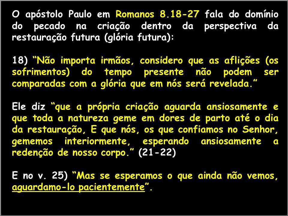 O apóstolo Paulo em Romanos 8