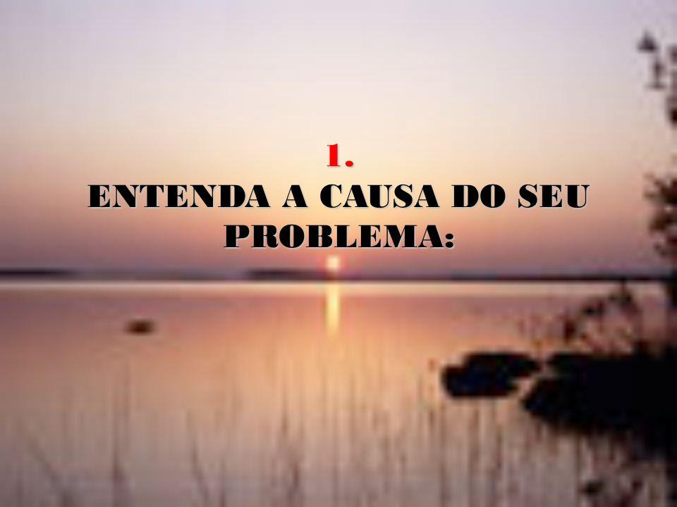 ENTENDA A CAUSA DO SEU PROBLEMA:
