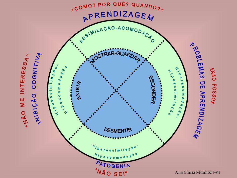Hipoassimilação- Hipoacomodação Hiperacomodação- Hipoassimilação