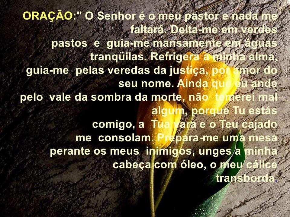 ORAÇÃO: O Senhor é o meu pastor e nada me faltará