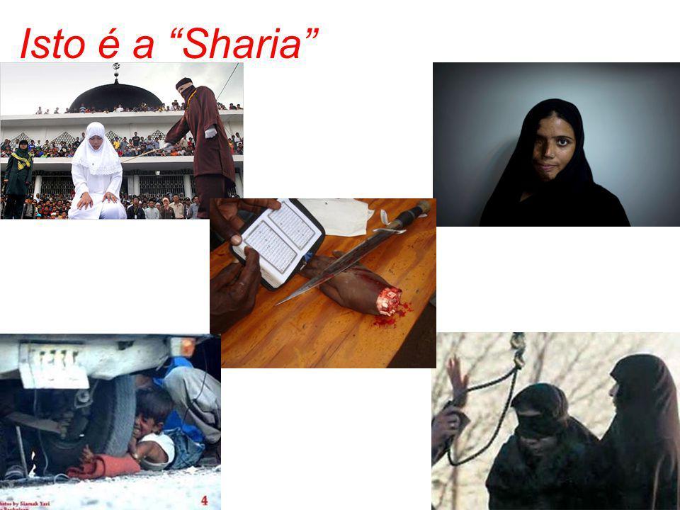 Isto é a Sharia
