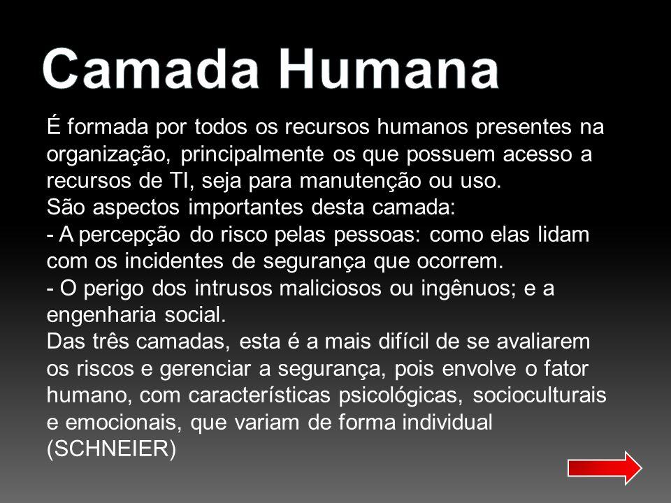 Camada Humana É formada por todos os recursos humanos presentes na