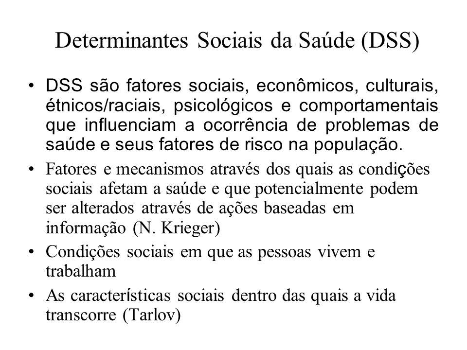 Determinantes Sociais da Saúde (DSS)