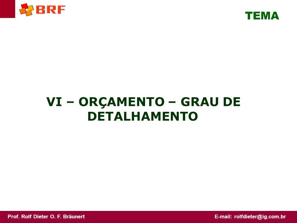 TEMA VI – ORÇAMENTO – GRAU DE DETALHAMENTO