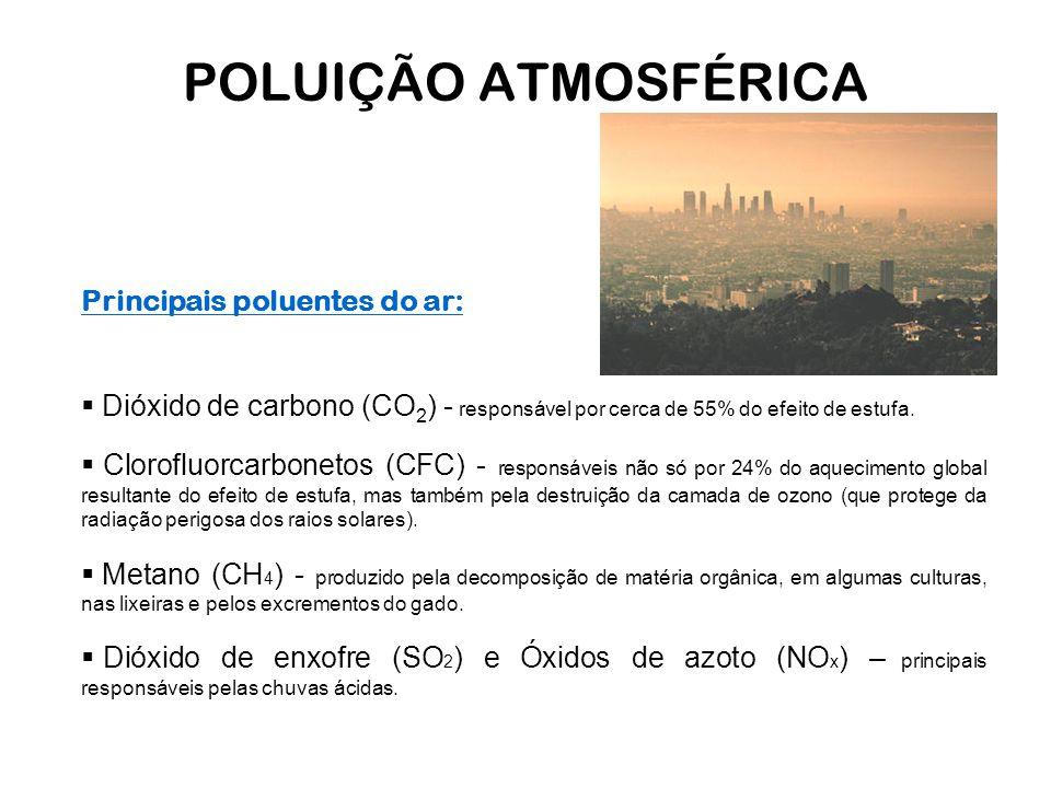 POLUIÇÃO ATMOSFÉRICA Principais poluentes do ar: