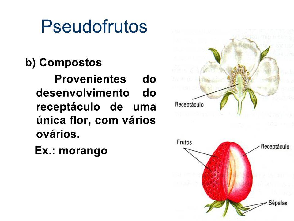 Pseudofrutos b) Compostos