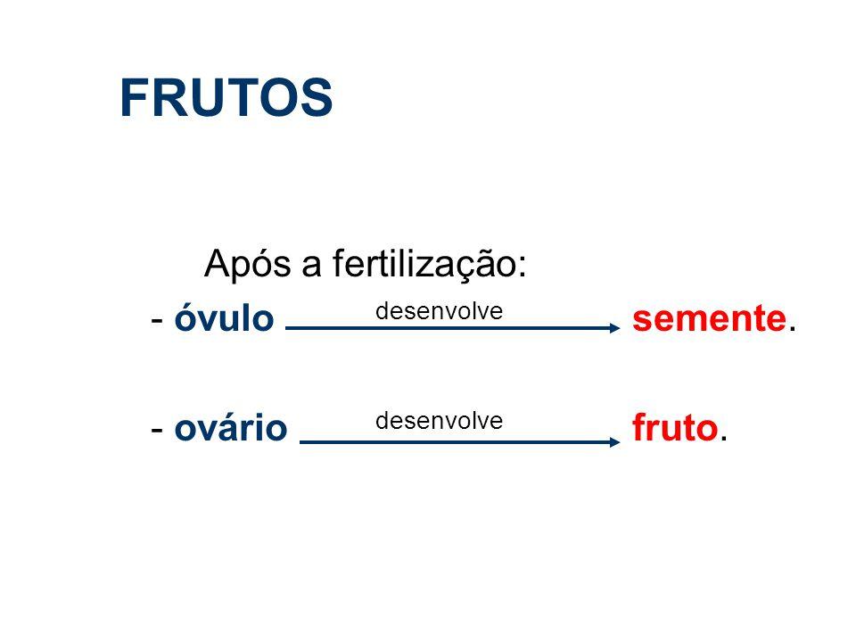 FRUTOS - óvulo desenvolve semente. - ovário desenvolve fruto.