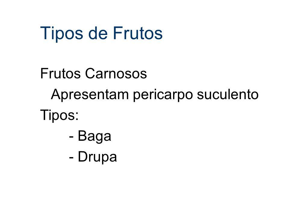 Tipos de Frutos Frutos Carnosos Apresentam pericarpo suculento Tipos: