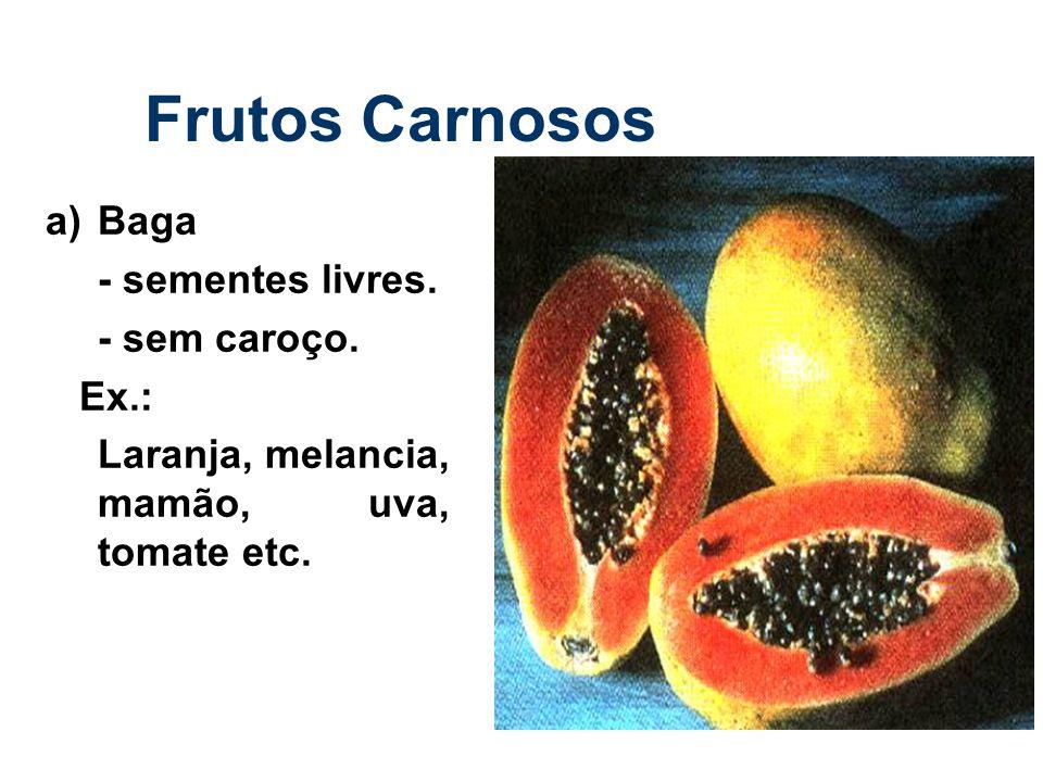 Frutos Carnosos a) Baga - sementes livres. - sem caroço. Ex.: