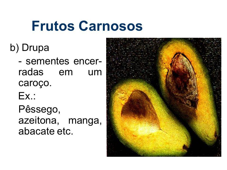 Frutos Carnosos b) Drupa - sementes encer-radas em um caroço. Ex.:
