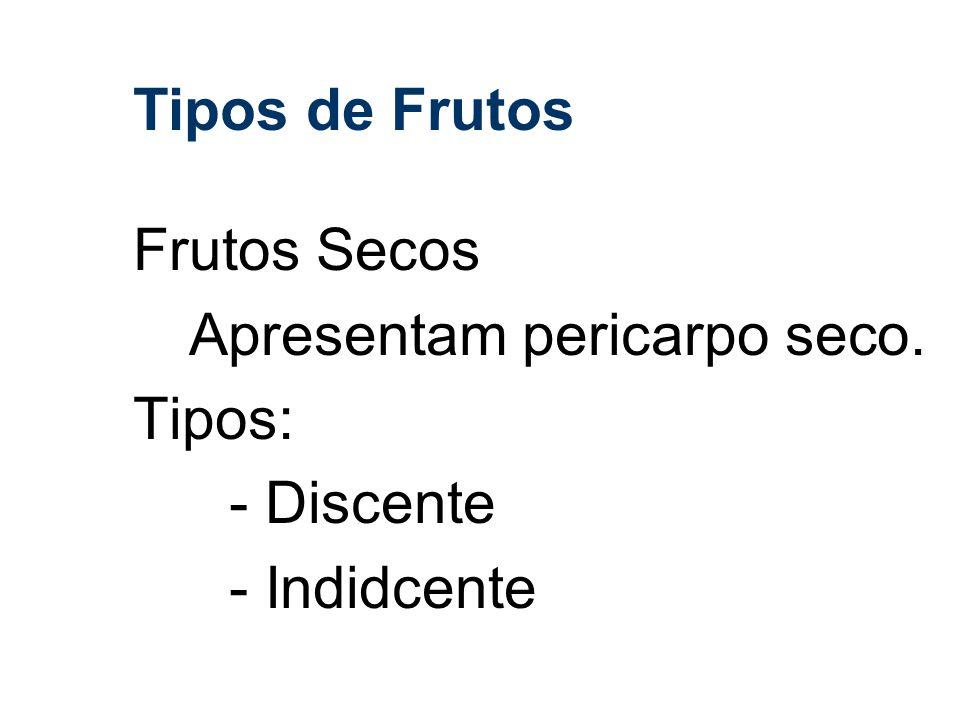 Tipos de Frutos Frutos Secos Apresentam pericarpo seco. Tipos: - Discente - Indidcente