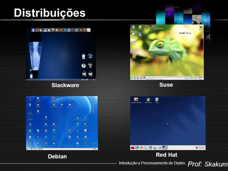Distribuições Slackware Suse Red Hat Debian