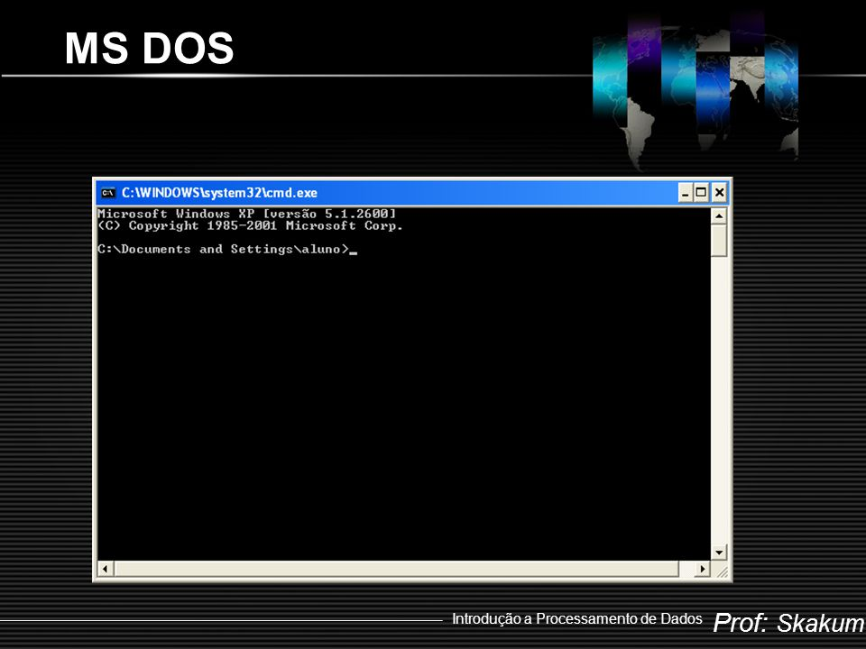 MS DOS Introdução a Processamento de Dados