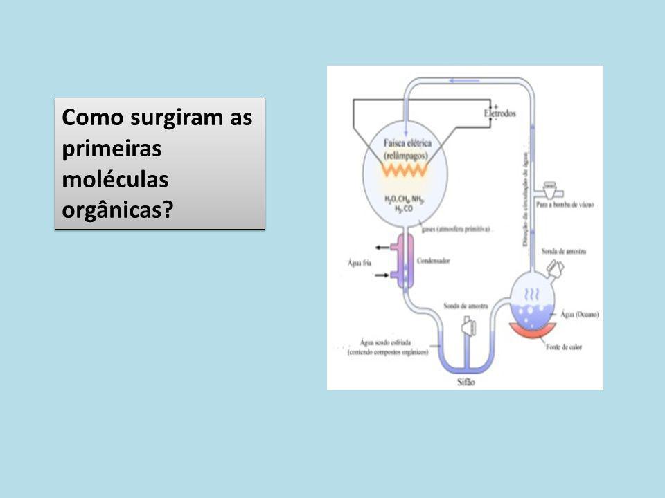 Como surgiram as primeiras moléculas orgânicas