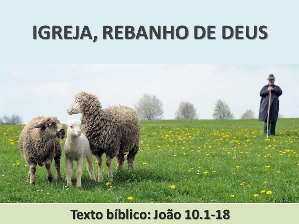 IGREJA, REBANHO DE DEUS Texto bíblico: João 10.1-18