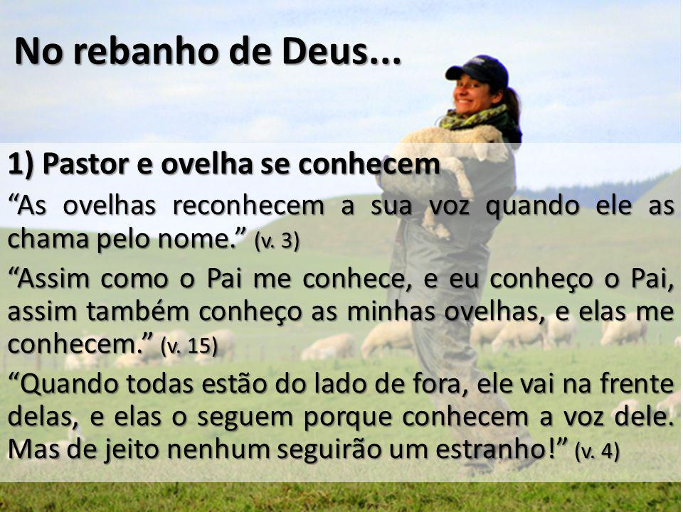 No rebanho de Deus... 1) Pastor e ovelha se conhecem