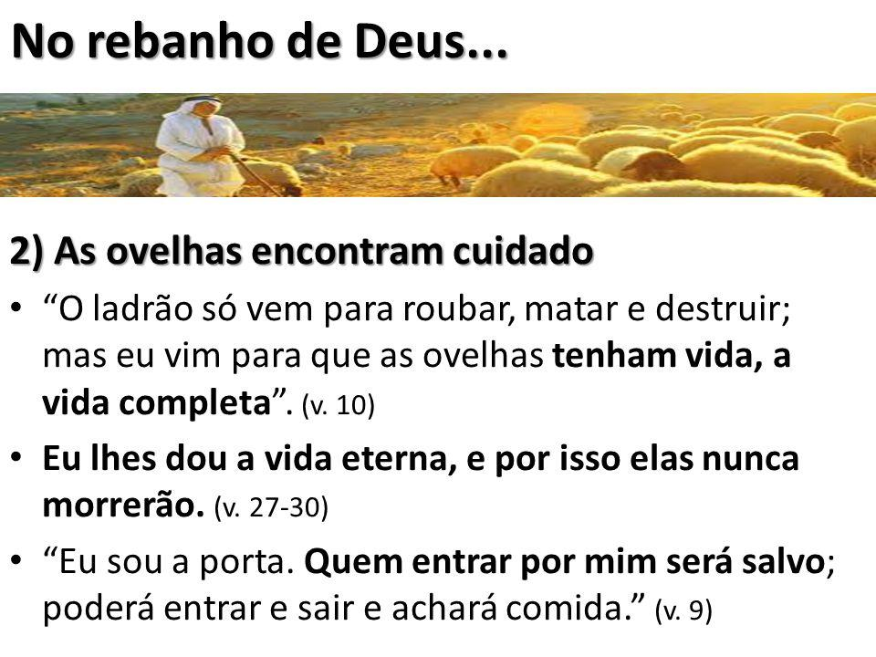 No rebanho de Deus... 2) As ovelhas encontram cuidado