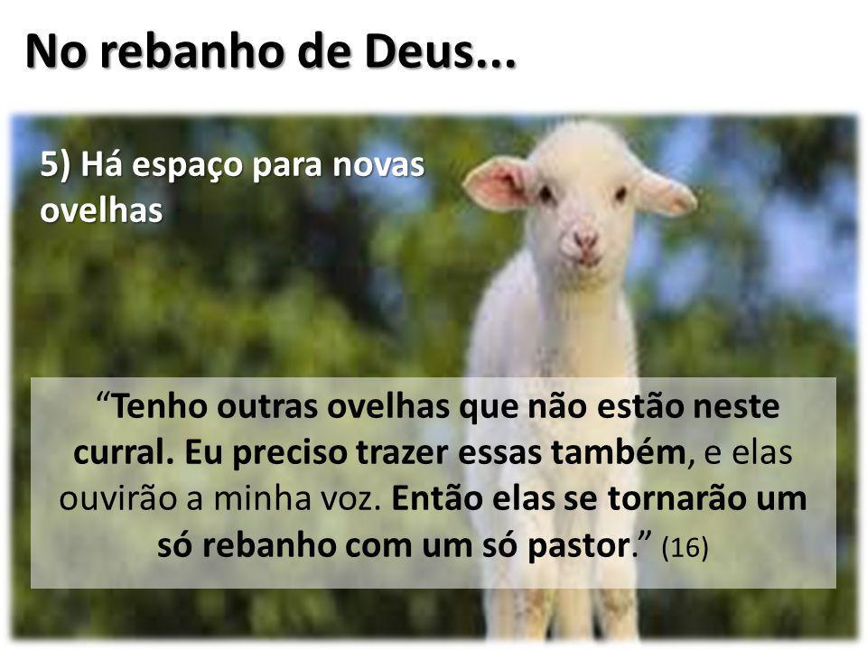 No rebanho de Deus... 5) Há espaço para novas ovelhas