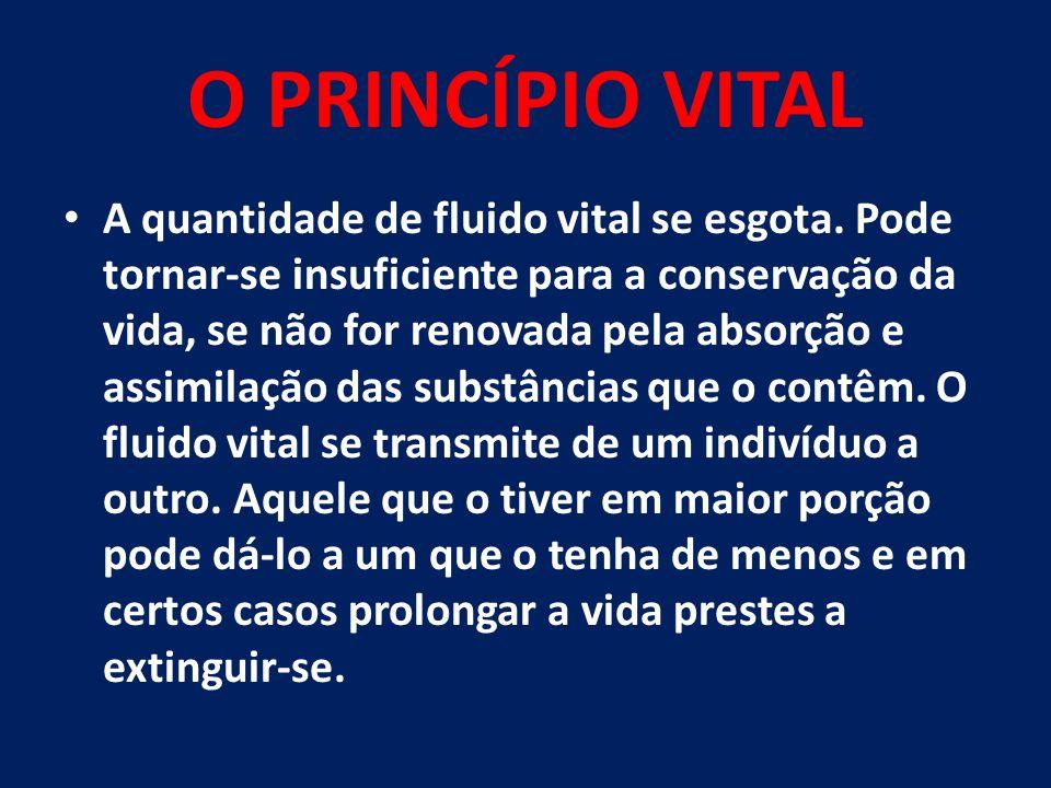 O PRINCÍPIO VITAL