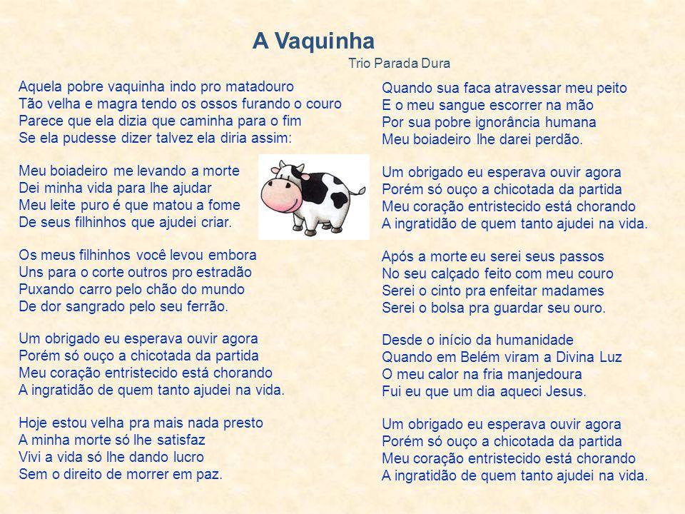 A Vaquinha Trio Parada Dura.
