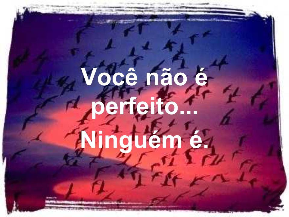 Você não é perfeito... Ninguém é.