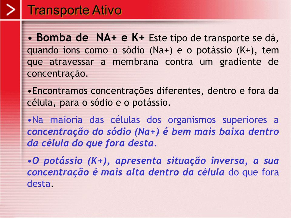 Transporte Ativo