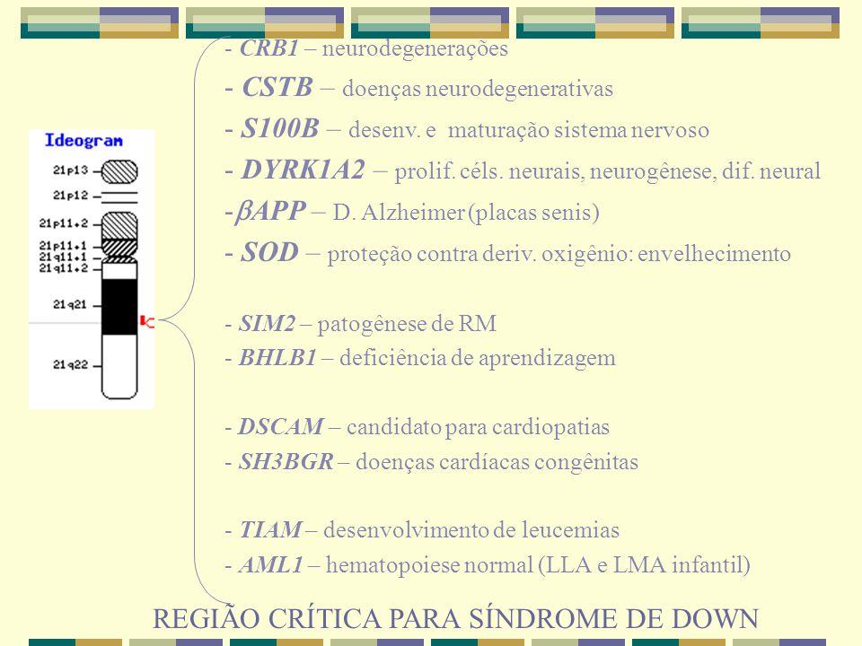 REGIÃO CRÍTICA PARA SÍNDROME DE DOWN