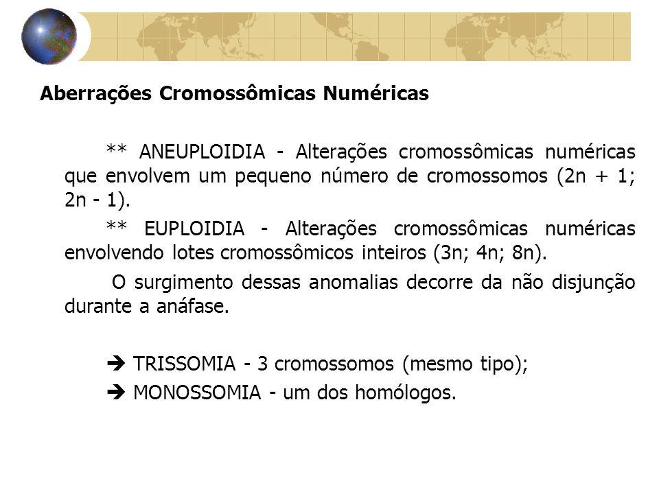 Aberrações Cromossômicas Numéricas