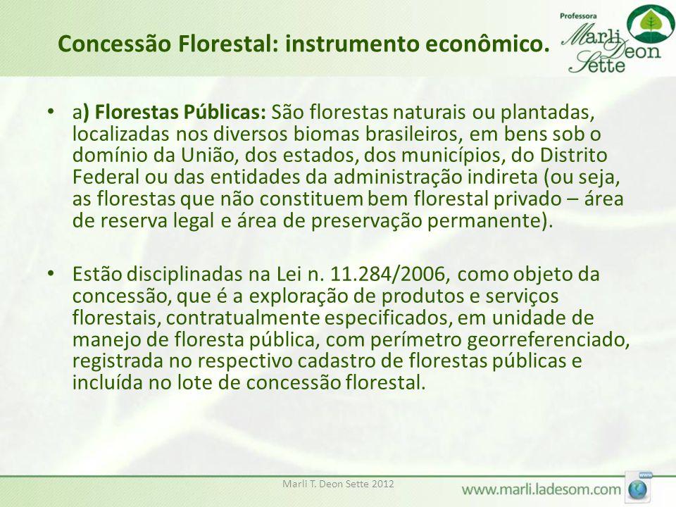 Concessão Florestal: instrumento econômico.