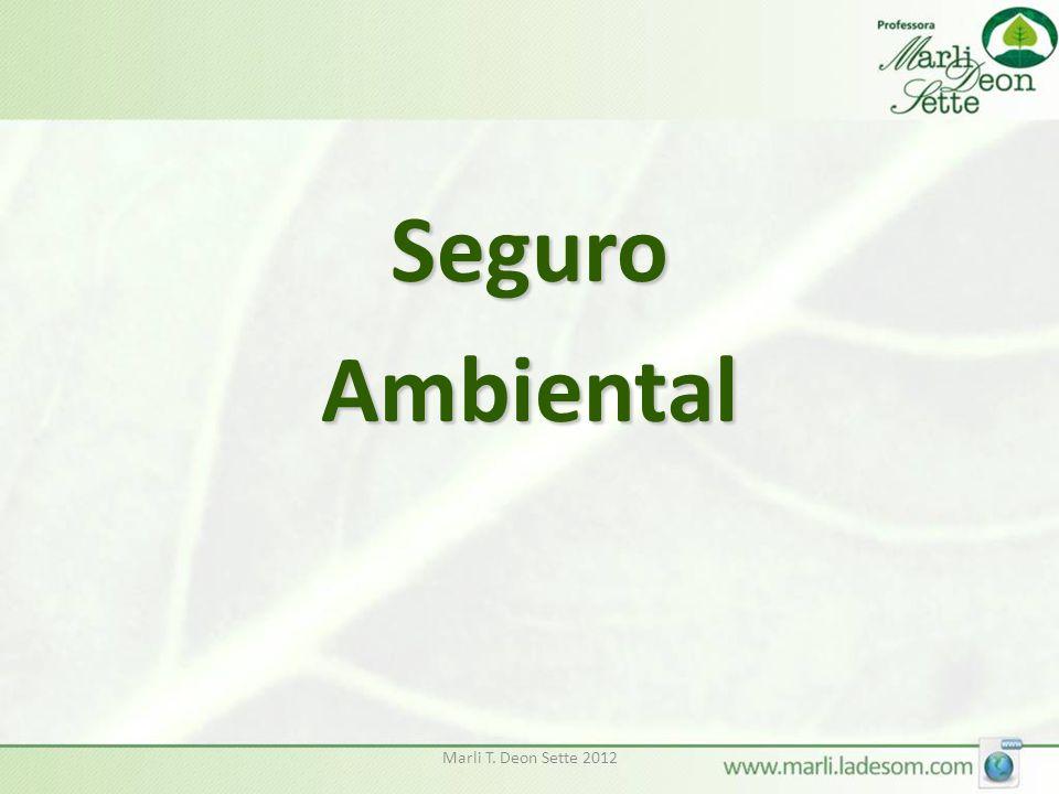 Seguro Ambiental Marli T. Deon Sette 2012
