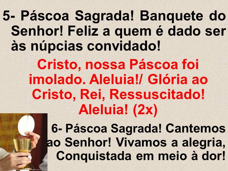 5- Páscoa Sagrada. Banquete do Senhor