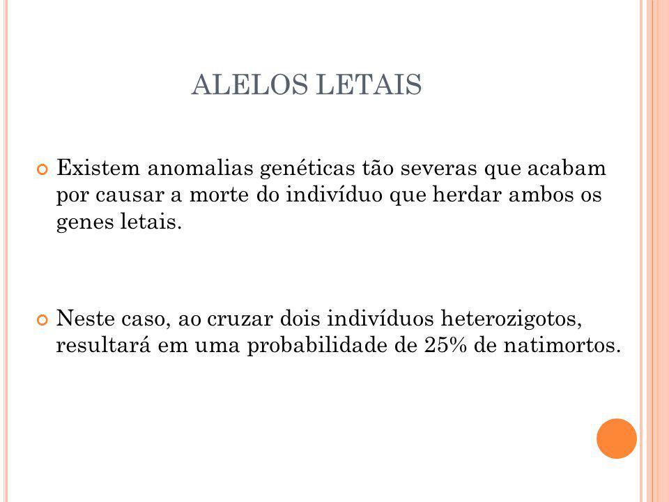 ALELOS LETAIS Existem anomalias genéticas tão severas que acabam por causar a morte do indivíduo que herdar ambos os genes letais.