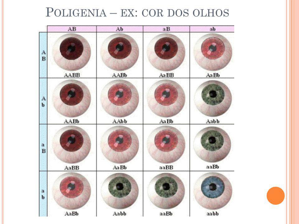 Poligenia – ex: cor dos olhos