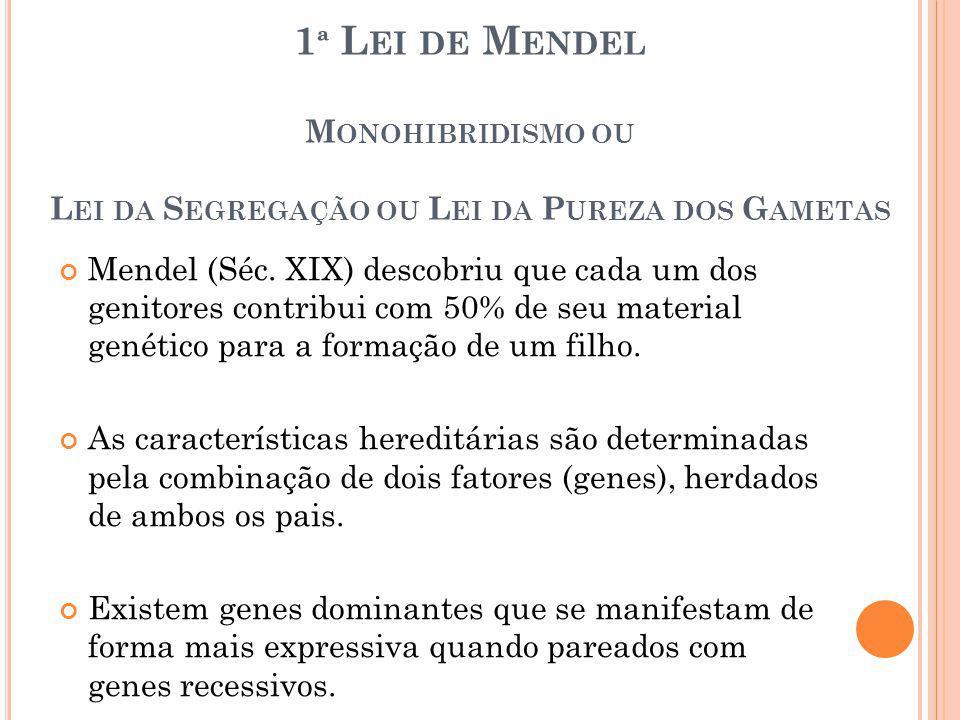 1ª Lei de Mendel Monohibridismo ou Lei da Segregação ou Lei da Pureza dos Gametas