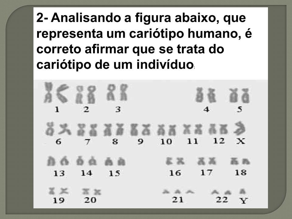 2- Analisando a figura abaixo, que representa um cariótipo humano, é correto afirmar que se trata do cariótipo de um indivíduo: