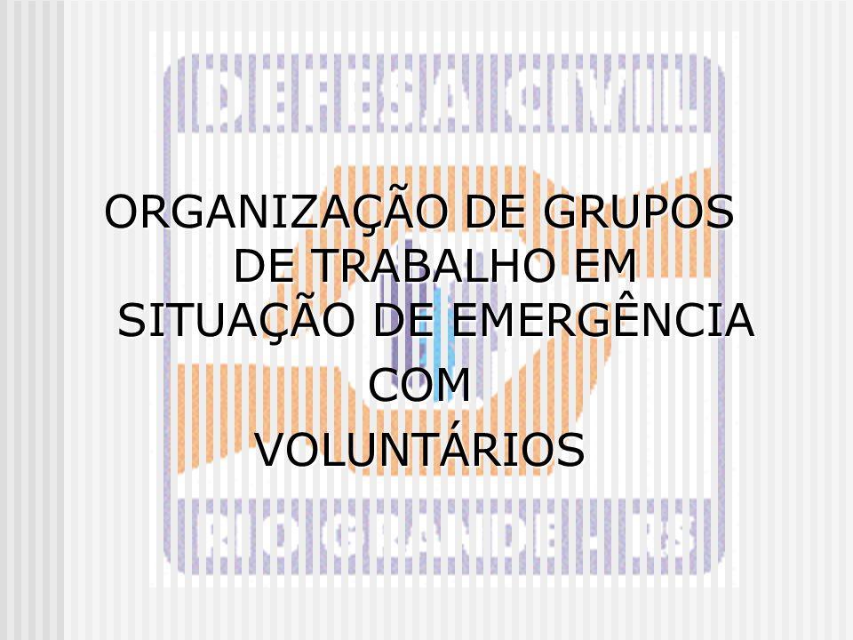 ORGANIZAÇÃO DE GRUPOS DE TRABALHO EM SITUAÇÃO DE EMERGÊNCIA