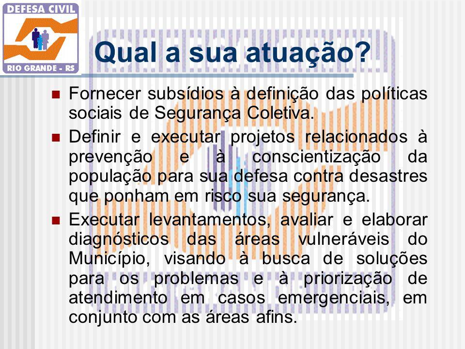 Qual a sua atuação Fornecer subsídios à definição das políticas sociais de Segurança Coletiva.