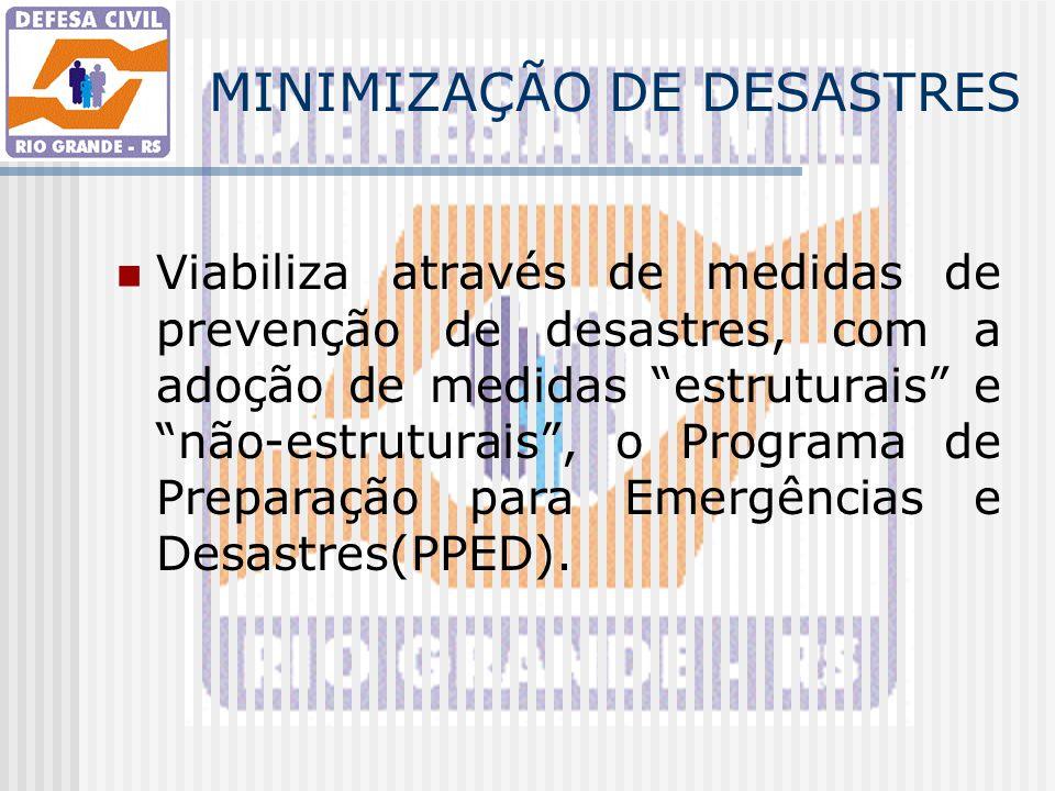 MINIMIZAÇÃO DE DESASTRES