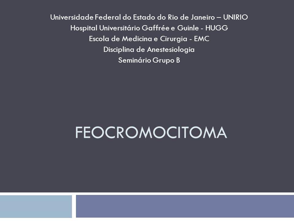 Universidade Federal do Estado do Rio de Janeiro – UNIRIO