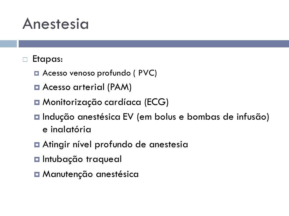 Anestesia Etapas: Acesso arterial (PAM) Monitorização cardíaca (ECG)