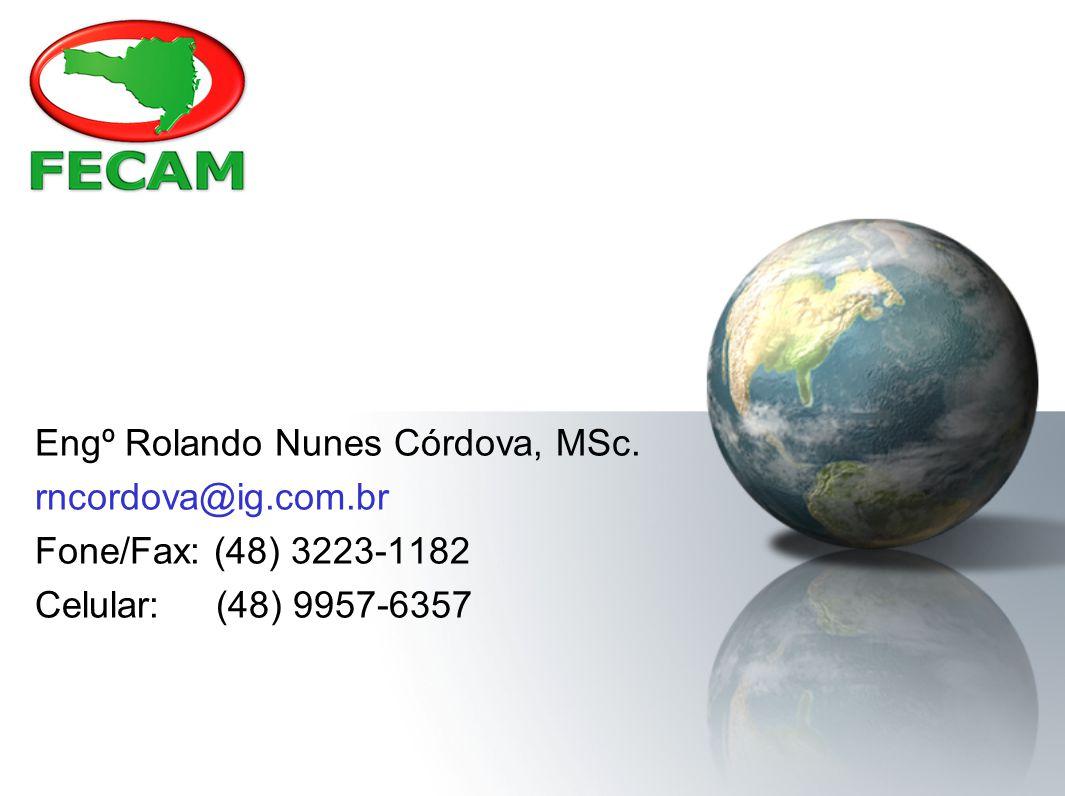 Engº Rolando Nunes Córdova, MSc.