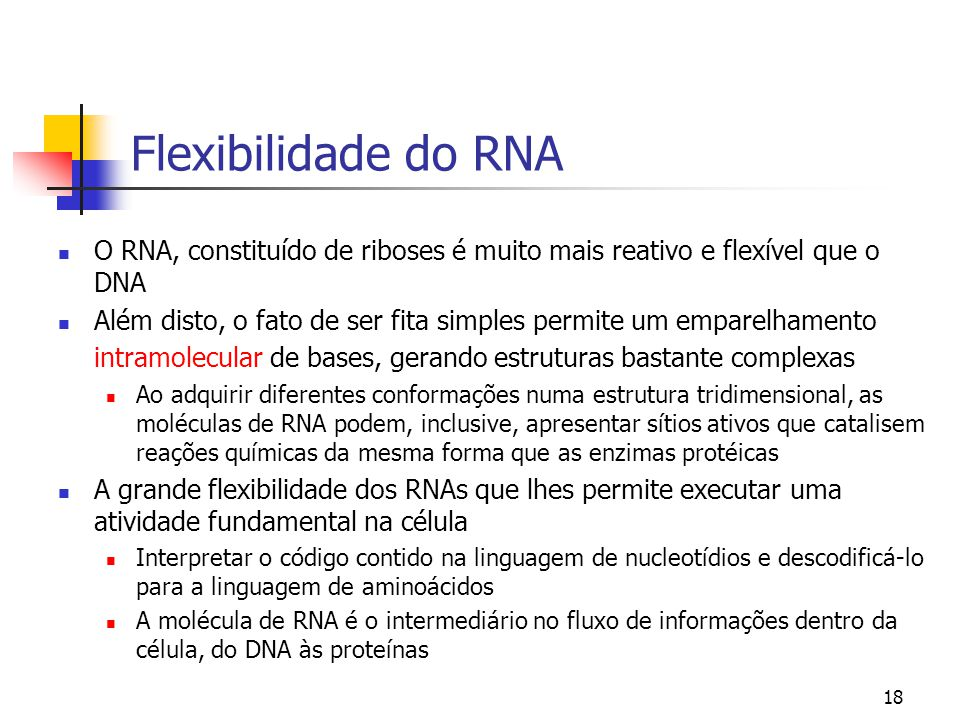 Flexibilidade do RNA O RNA, constituído de riboses é muito mais reativo e flexível que o DNA.