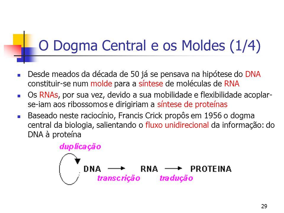 O Dogma Central e os Moldes (1/4)
