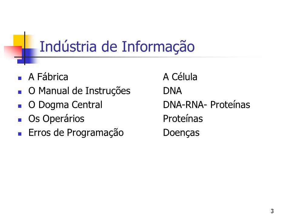Indústria de Informação