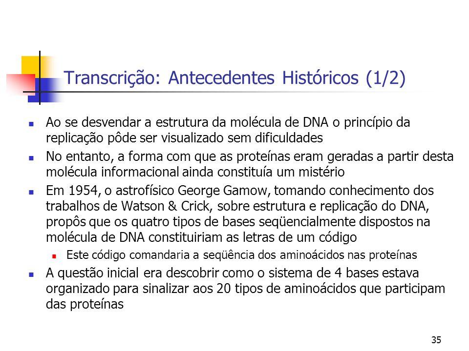 Transcrição: Antecedentes Históricos (1/2)