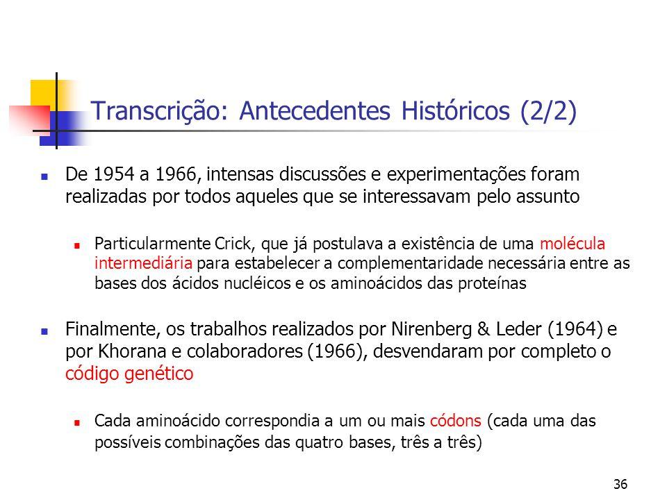 Transcrição: Antecedentes Históricos (2/2)