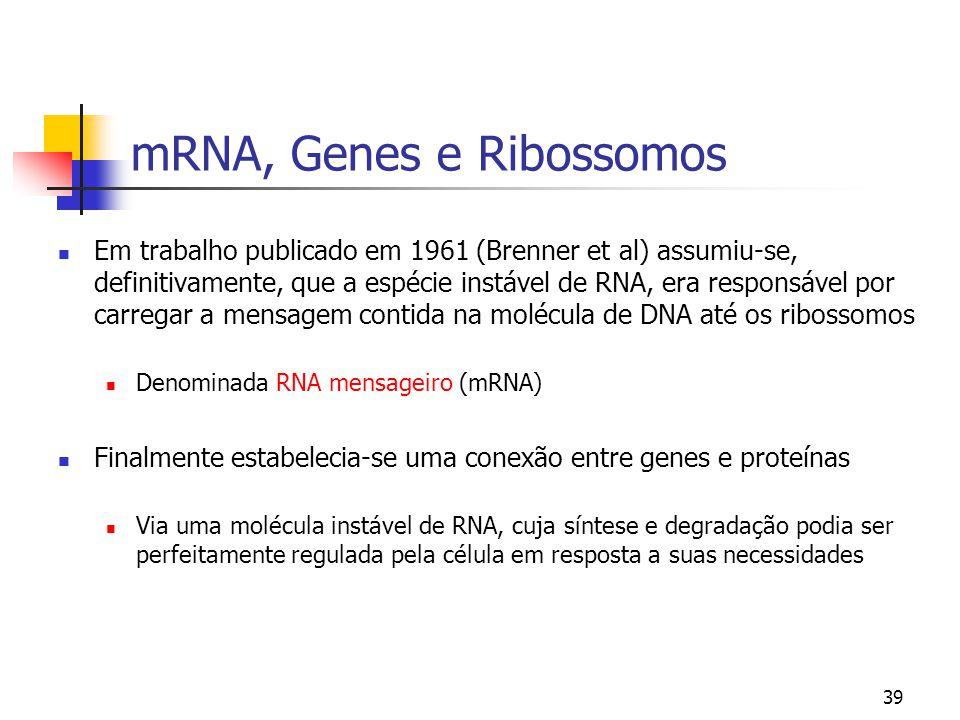 mRNA, Genes e Ribossomos