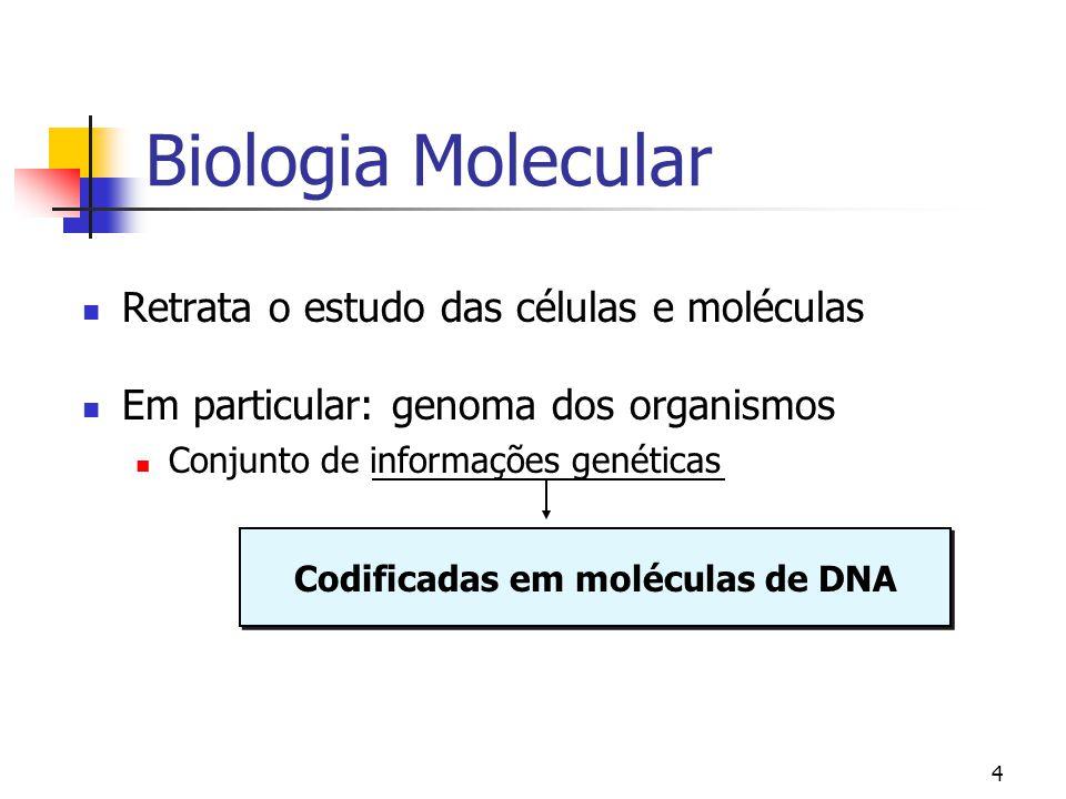 Codificadas em moléculas de DNA
